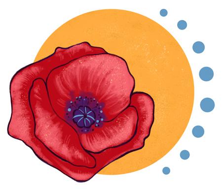Heilpraktikerin Michaela Schaaf. Logo. Praxis natürlich und gesund. Klatschmohn. Sonne.